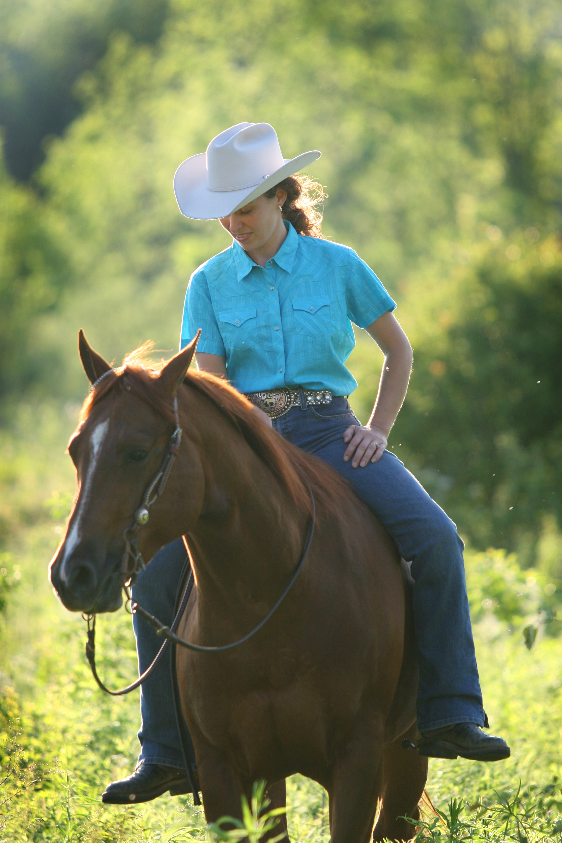 Connecting with your horse stacy westfall horseblog for West fall