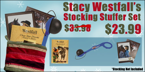 stacy_stocking_banner
