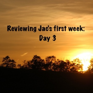 Jac Day by Day Review; Day 3