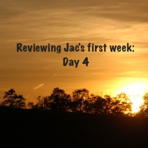 Jac Day by Day Review Day 4