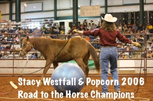 Stacy Westfall & Popcorn 2006 Road to the Horse