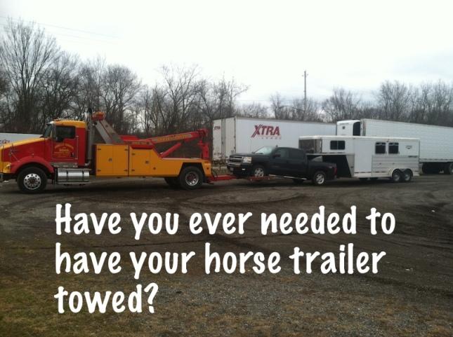 tow  horse trailer