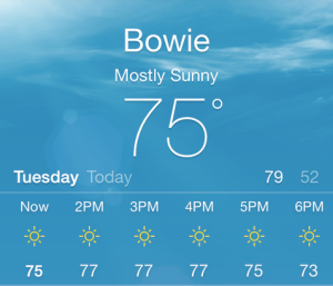 Bowie 75degrees