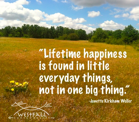 Lifetime happiness is found in little everyday things, not in one big thing. ""