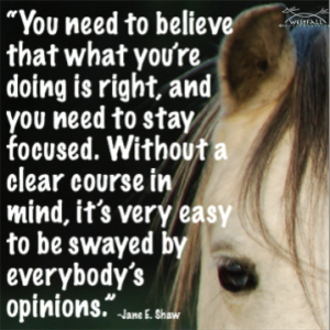 You need to believe that what you're doing is right, and you need to stay focused. Without a clear course in ind, it's very easy to be swayed by everybody's opinions.-Jane E. Shaw