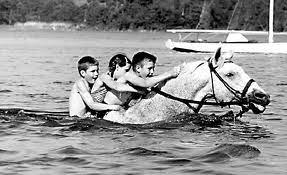 Snowman, The Eighty-Dollar Champion: Snowman, The Horse That Inspired a Nation'  swimming