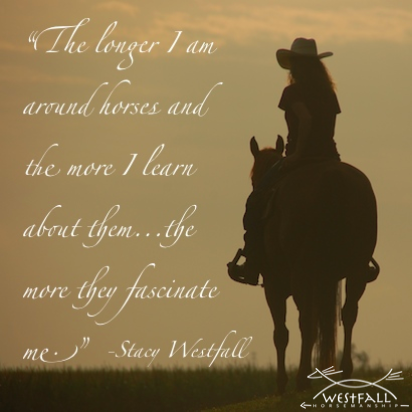 The longer I am around horses and the more I learn about them...the more they fascinate me. Stacy Westfall quote