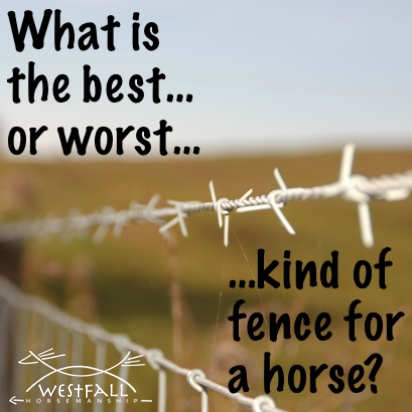 Leave a comment with your experience or your idea of the perfect fencing material.