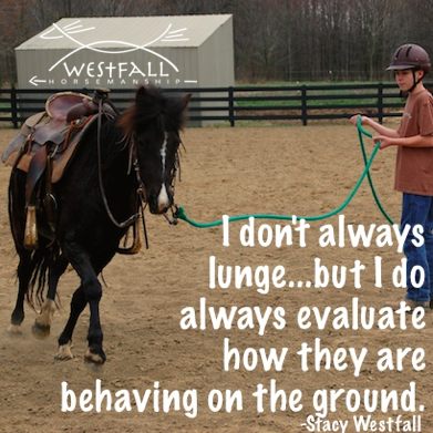 I don't always lunge, but I do always evaluate how the horse is behaving on the ground.