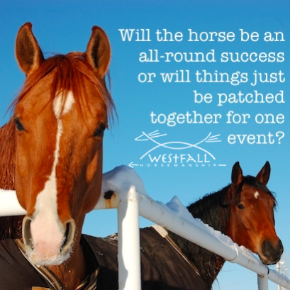 Will the horse be an all-round success or will things just be patched together for that one event?